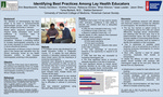 Identifying Best Practices Among Lay Health Educators