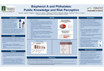 Bisphenol A and Phthalates: Public Knowledge and Risk Perception