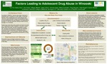 Factors Leading to Adolescent Drug Abuse in Winooski