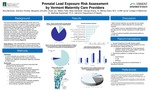 Prenatal Lead Exposure Risk Assessment by Vermont Maternity Care Providers by Amy M. Berkman, Brendon Kinsley, Margaret S. Johnston, Rose Kristine Leu, Niketu P. Patel, Maia Sakradse, George Zhang, Wendy Davis, and Matthew Bradstreet