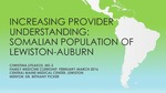 Increasing Provider Understanding: Somalian Population of Lewiston-Auburn by Christina Litsakos