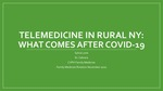 Telemedicine in Rural NY: What Comes After COVID-19