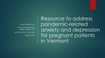 Resource to address pandemic-related anxiety and depression for pregnant patients in Vermont